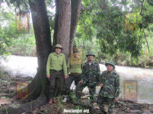 Douclangur.org CMR patrol team webpage
